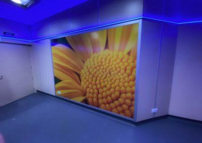 Protección de paredes para quirófanos - Protectwall