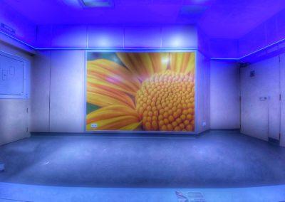 Protección de paredes para quirófanos - - Protectwall
